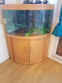 Juwel trigon 190 litre fish tank and stand