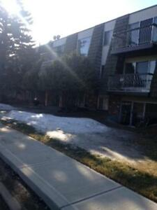 2 Bedroom -  - Grand Park Village - Apartment for Rent Camrose Edmonton Edmonton Area image 10