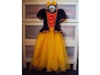 Sleeping Beauty Fancy Dress Dress Up Age 3-4 years, worn twice