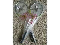 Dsx Independent Badminton Racket X 2