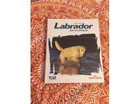 Labrador encylopedia (Royal Canin)