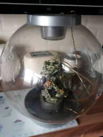 Orb fish tank