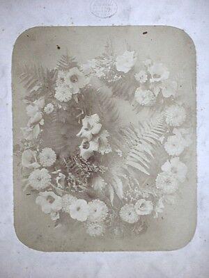 Adolphe BRAUN, Vintage Albumin Fotografie um 1850, Blumenarrangement