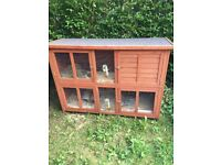 Free 2 x Guinea Pigs with 2 Storey Hutch