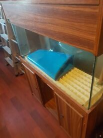 FISH TANK AND STAND £100 ONO