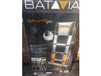 Batvia giraffe telescopic ladder