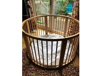 Beautiful beech playpen - a.k.a the circle of neglect!