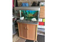 165l aqua vista fish tank very nice full set up with stand 3 x light filter heater lid gravel orname