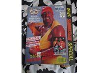 RARE WWE/ WWF WRESTLING SUPER STARS POSTER MAGAZINE HULK HOGAN HAVE OTHER MAGAZINES