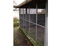 Wooden Dog Kennels and galvanised runs