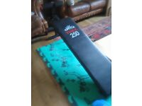 Excercixe bench mat weights and absolute trainer