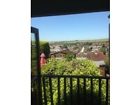Single room to rent in Brighton