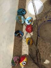 Large coloured hermit crabs for sale Scarborough Stirling Area Preview