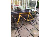 Mens Yellow Bicycle