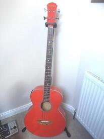 Freshman Electro-acoustic Bass guitar