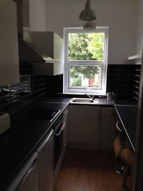 Victorian 1 Bed Flat with separate kitchen and lounge