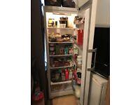 Tall larder Hotpoint fridge