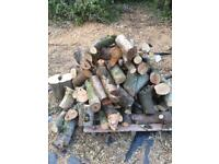 🔥 LOGS FOR SALE 🔥
