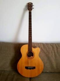 Vintage Electro Acoustic Bass