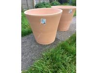 Large terracotta garden plant pots