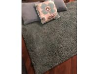 Next Rug and Cushions Teal