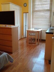 Great Size Bedsit in Wood Green