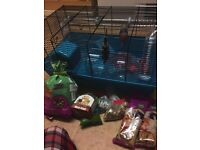 Large hamster cage with lots of accessories