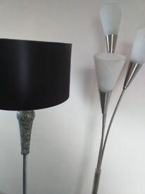 2 Standard lamps