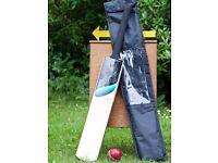 Duck & Run 'Katsu 600' Cricket Bat - Mens