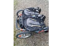 For Sale Double Buggy