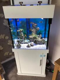 Marine fish tank and equipment