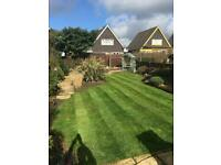 Garden maintenance - grass cutting, hedge trimming, pressure washing, turfing, stump removal