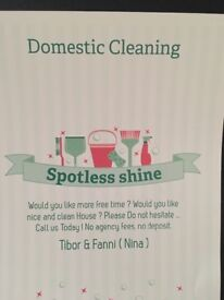 Domestic cleaning from £10
