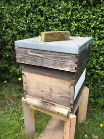 Bee hive and honey bee colony
