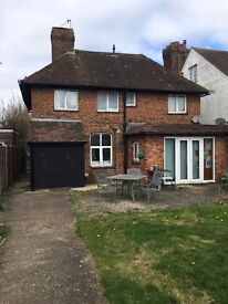 Single room to rent in Chichester house share