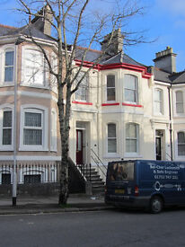 Spacious 1 double bedroom lower ground floor flat in Stoke. Pleasant street with easy parking.