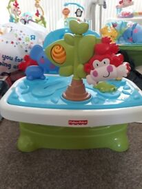 Fisher price discover n grow portable booster seat