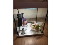 Fish Tank with accessories (Pets at Home)