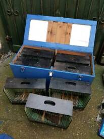 Small bird show/carry cages