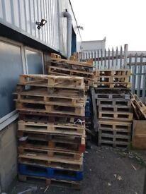 Pallets free to collector. Various sizes but mostly standard uk size.