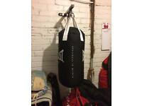 Everlast punch bag and gloves