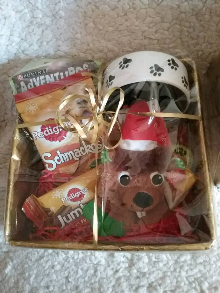 Dog treats box for christmas