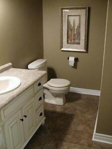 COMPLETE HOME IMPROVEMENTS by Noah's Ark Home Improvements Inc. London Ontario image 4