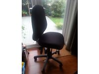 Orthopaedic Office Chair - Albion Swivel Chair