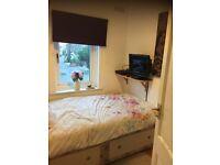Single Room to rent Southwick
