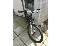 Custom Jump Bike 26 inch
