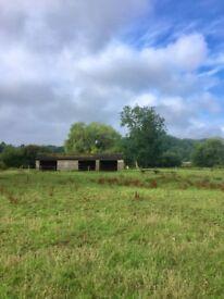 Equestrian - DIY Livery Space Field Shelter - Dereham £150 per calendar month