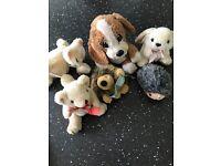Selection of small teddies. Hedgehog teddy, cat, dog, rabbit