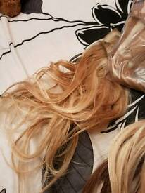 Wig plus hair pieces