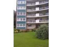 Excellent 2 Bedroom Sunny Flat in Quiet Residential Area - DG & CH - Fairmilehead / Caiystane - EH10
